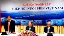 Thành lập Hiệp hội Nuôi biển Việt Nam (VSA)