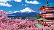 Nhật Bản là thị trường nhập khẩu lớn thứ 3 của Việt Nam