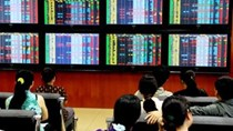 Phiên sáng 23/11: MSN nổi sóng sau thông tin chia thưởng cổ phiếu và cổ tức khủng