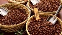 Xuất khẩu cà phê tăng trưởng mạnh