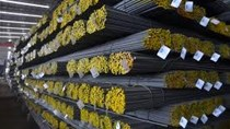 Công ty Italia có nhu cầu tìm đối tác Việt Nam kinh doanh trong lĩnh vực thép