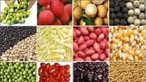 Tạm ngừng nhập khẩu một số nông sản từ Indonesia