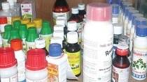 Viêt Nam mua thuốc trừ sâu Trung Quốc nhiều nhất