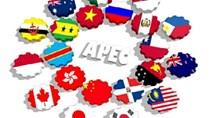 APEC 2017: Cải thiện chất lượng chính sách và thúc đẩy ngành CN hỗ trợ khu vực
