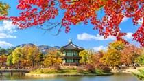 Xuất khẩu sang Hàn Quốc: thủy tinh và sản phẩm thủy tinh tăng mạnh nhất