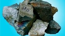 Hàn Quốc gia hạn điều tra CBPG hợp kim Ferro-Silico-Managnese nhập từ VN