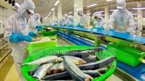 Xuất khẩu cá tra của Việt Nam đi Mỹ gặp khó