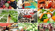 Xuất khẩu các mặt hàng nông sản chính ước đạt 10,89 tỷ USD