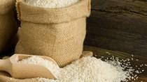 Gạo xuất khẩu được giá