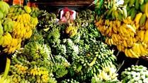 Giá rau củ xuất khẩu tuần 1-7/9/2017