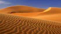 Việt Nam không xuất khẩu cát ra nước ngoài
