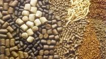 Giá nguyên liệu sản xuất thức ăn chăn nuôi nhập khẩu tuần 27/10 -3/11/2017