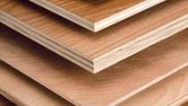Mỹ áp thuế chống phá giá với gỗ dán cứng Trung Quốc
