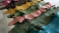 Thị trường chủ yếu cung cấp nguyên phụ liệu da giày cho Việt Nam 10 tháng đầu năm