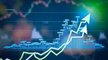 Chứng khoán sáng 21/12: SAB chưa ngừng rơi, VN-Index suýt mất điểm