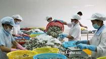 Giá thủy sản xuất khẩu tuần 5-11/1/2018