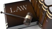 Dự thảo NĐ hướng dẫn Luật Quản lý ngoại thương: Thuận lợi cho XNK