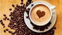Tháng đầu năm 2018 xuất khẩu cà phê tăng trưởng tốt