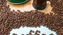 Giá cà phê ngày 10/03/2018 tăng trở lại