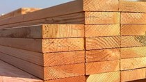 Giá gỗ nhập khẩu tuần 23-30/3/2018