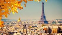 Quan hệ thương mại Việt - Pháp tăng trưởng tốt
