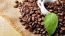 Xuất khẩu cà phê tăng về lượng, giảm về kim ngạch
