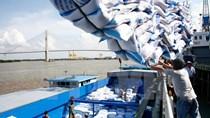 Xuất khẩu gạo trong 4 tháng đầu năm tăng mạnh