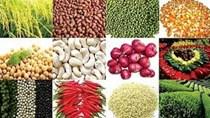 4 tháng năm 2018, xuất khẩu nông sản tăng 11,9% so với cùng kỳ năm 2017