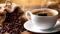 Giá cà phê ngày 2/6/2018 giảm nhẹ