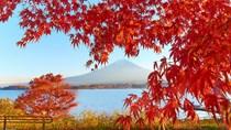 Đẩy mạnh quan hệ thương mại Việt – Nhật
