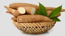 Sắn và sản phẩm sắn xuất khẩu sang Nhật Bản tăng rất mạnh