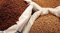 Giá nguyên liệu sản xuất thức ăn chăn nuôi nhập khẩu tuần 25 -31/5/2018