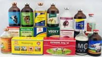 Nông sản Việt vào Hàn Quốc phải kiểm tra 370 loại thuốc bảo vệ thực vật