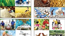 Ngành nông nghiệp tăng trưởng cao nhất trong 10 năm qua