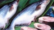Thuế chống bán phá giá cá tra giảm mạnh