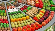 Thị trường xuất khẩu rau quả 8 tháng đầu năm 2018