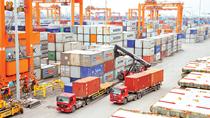 Tin đáng chú ý 27/1/2019: TQ mở cửa trái cây; Cảnh báo phế liệu nhập khẩu tăng mạnh
