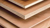 Doanh nghiệp Úc cần nhập khẩu mặt hàng gỗ từ Việt Nam