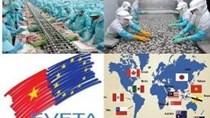 Doanh nghiệp thủy sản và EVFTA: Niềm vui có chia đều?