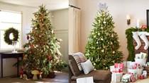 Doanh nghiệp Hồng Kông tìm đối tác sản xuất sản phẩm phục vụ Giáng sinh