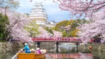 Nhập khẩu hàng hóa từ Nhật Bản 6 tháng đầu năm 2019 giảm nhẹ