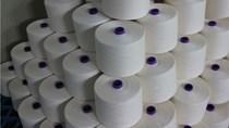 Doanh nghiệp Lít-va cần hợp tác xây dựng nhà máy sản xuất sợi gai tại VN