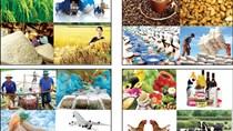 Xuất khẩu nông, lâm, thủy sản khó chạm mốc 43 tỷ USD