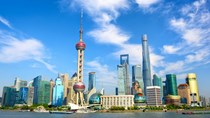 Những nhóm hàng chủ yếu xuất khẩu sang Trung Quốc 6 tháng đầu năm 2019