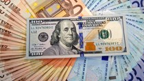 Tỷ giá ngoại tệ 11/9/2019: Tỷ giá trung tâm giảm
