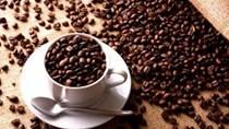 Xuất khẩu cà phê 8 tháng đầu năm 2019 giảm cả lượng, giá và kim ngạch