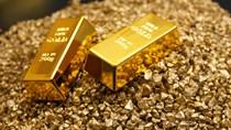 Giá vàng ngày 24/10/2019 giảm nhẹ