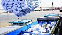 Xuất khẩu gạo sang Philippines và Bờ biển Ngà tăng rất mạnh