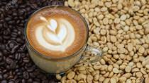 Kim ngạch xuất khẩu cà phê Việt Nam 11 tháng đầu năm 2019 giảm 22,4%
