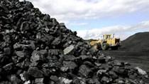 Xuất khẩu than đá năm 2019 sụt giảm mạnh